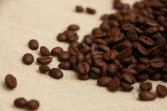 Free Coffee Beans On Burlap 5 Stock Photography - 42480182