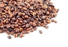 Free Coffee Beans On White Stock Photos - 593443