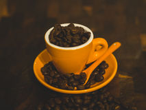 Coffee Beans. Overflow of fresh oily Arabic coffee beans in an orange espresso cup Royalty Free Stock Photo
