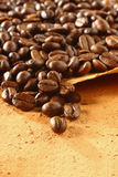 Coffee beans on parchment Stock Photos