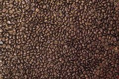 Coffee beans pattern background gold and dark.  Stock Images
