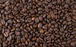 Coffee beans pattern Royalty Free Stock Photo