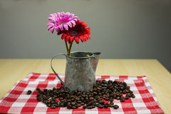 Coffee beans pattern, Selective focus. Stock Images