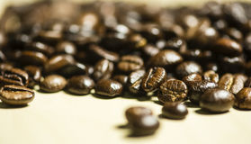 Coffee beans pattern, Selective focus. Stock Photo