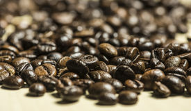 Coffee beans pattern, Selective focus. Stock Photos