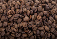 Coffee beans pile isolated on white. Close up of fresh roasted coffee beans Royalty Free Stock Photo