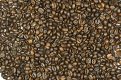 Coffee beans. Are placed throughout the image area Stock Photography