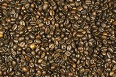 Coffee beans. Are placed throughout the image area Stock Photos