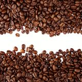 Coffee beans on plain background Stock Images