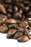 Coffee Beans. Coffee  beans on a plain background Royalty Free Stock Photography