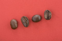 Coffee Beans. Coffee  beans on a plain background Royalty Free Stock Photos