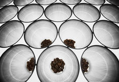 Coffee beans in plastic cups, angular view Stock Photography