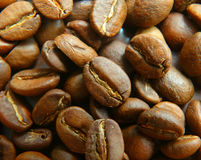 Coffee beans in a pot Stock Images
