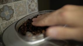 Coffee beans poured into a coffee machine stock footage