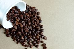 Coffee beans are poured out of white cup royalty free stock photos