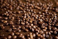 Coffee beans on coffee powder. Macro shot royalty free stock photos