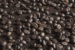Coffee beans on coffee powder. Macro shot stock images