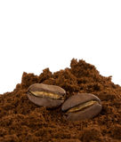Coffee beans and powder on white Stock Photo