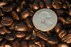 Coffee beans and quarter coin Stock Images