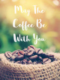 Coffee beans and quotes Stock Photography