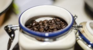 Coffee beans`r ready for use stock images