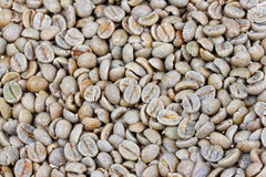 Coffee beans raw Royalty Free Stock Photography