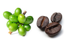 Coffee beans and raw coffee Royalty Free Stock Photos