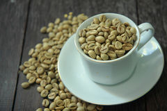 Coffee Beans. Raw coffee beans in white cup with blurred coffee beans on background Royalty Free Stock Image