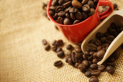 Coffee beans and the red cup on gunny bag Stock Photos