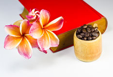Coffee beans with red flowers Stock Image