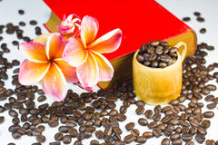 Coffee beans with red flowers Royalty Free Stock Image