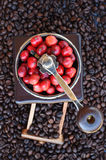 Coffee beans ripening in coffee grinder Royalty Free Stock Images