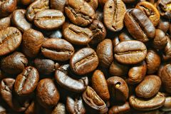 Coffee beans. Roasted coffee beans Stock Photos