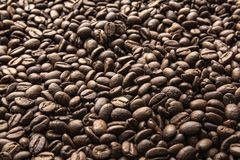 Coffee beans. Roasted coffee beans background royalty free stock photography