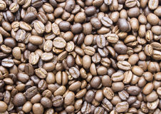 Coffee beans roasted and background Royalty Free Stock Images