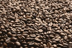 Coffee beans. Roasted coffee beans. Coffee background concept stock photos