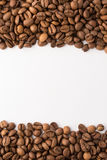 Coffee Beans. Roasted brown coffee beans on white isolated background royalty free stock photos