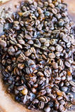 Coffee beans roasted. Gorgeous coffee freshly roasted ready to be grind and turned into a great beverage Royalty Free Stock Photos