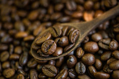The coffee beans roasted to perfection. Stock Image