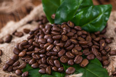 Coffee Beans (roasted) Royalty Free Stock Images