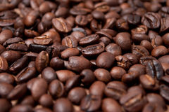 Coffee beans. Roasted whole, unground coffee beans Royalty Free Stock Photo