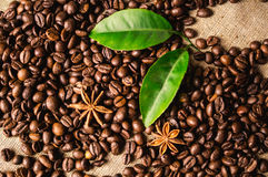 Coffee beans. Roasting coffee beans with spices - that`s how to begin coffee stock images