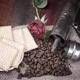 Coffee beans and roses Stock Image