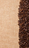 Coffee beans in a row on a canvas background Royalty Free Stock Photos