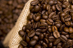 Coffee beans in a sack. Aromatic coffee beans in a sack Stock Images