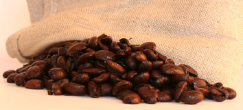 Coffee beans with sack. Macro coffee beans with hessian sack banner Royalty Free Stock Image