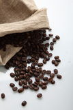 COFFEE BEANS IN SACK. Coffee beans spilled from burlap sack on white background Stock Photography