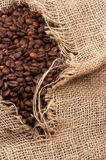 Coffee beans in sack Stock Image