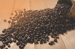 Coffee beans with sack bag on wooden table. Coffee beans with sack bag on wooden table background Royalty Free Stock Photo
