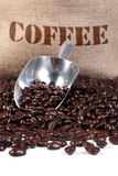 Coffee beans sack and scoop Stock Image
